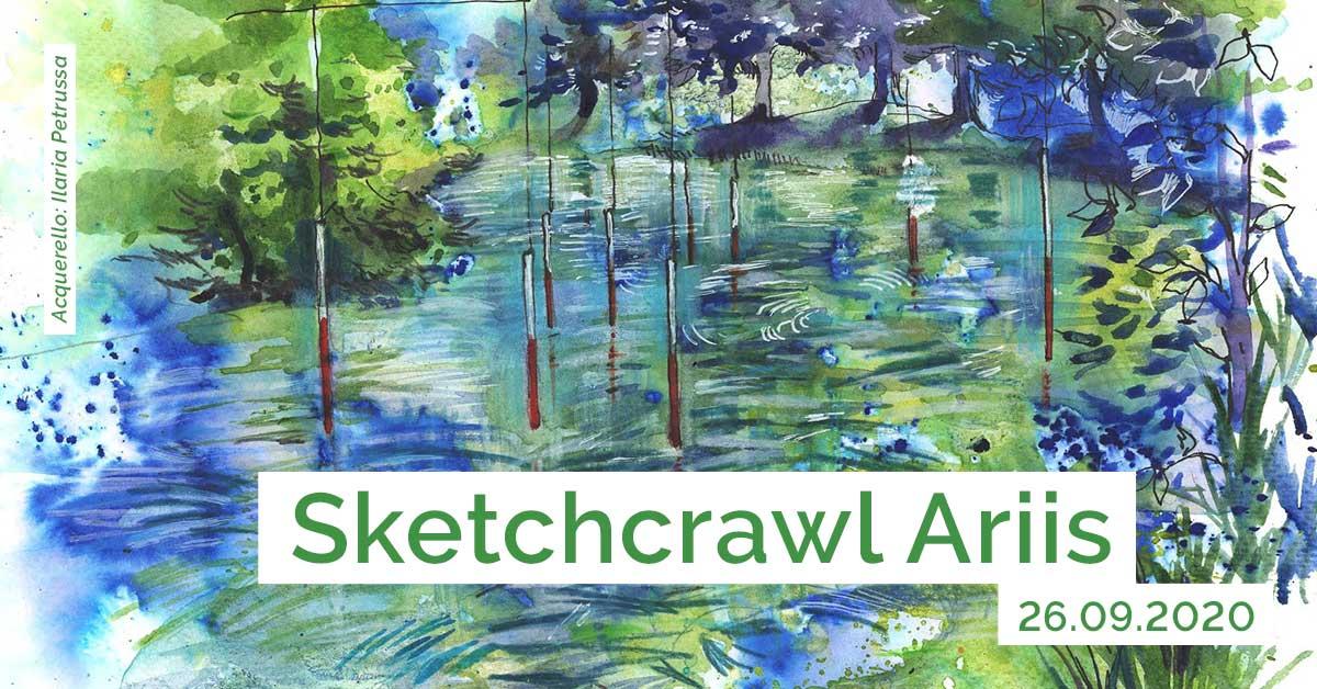 Sketchcrawl Ariis