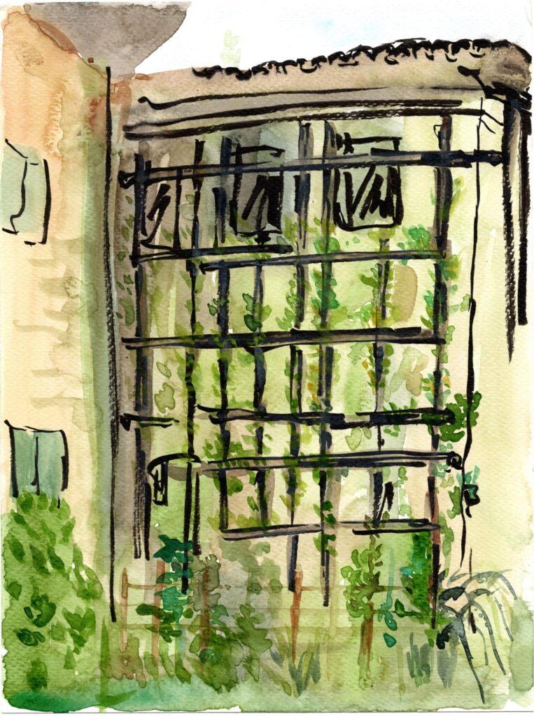 Sketchcrawl Ariis 2020 disegno Elisa Petrussa