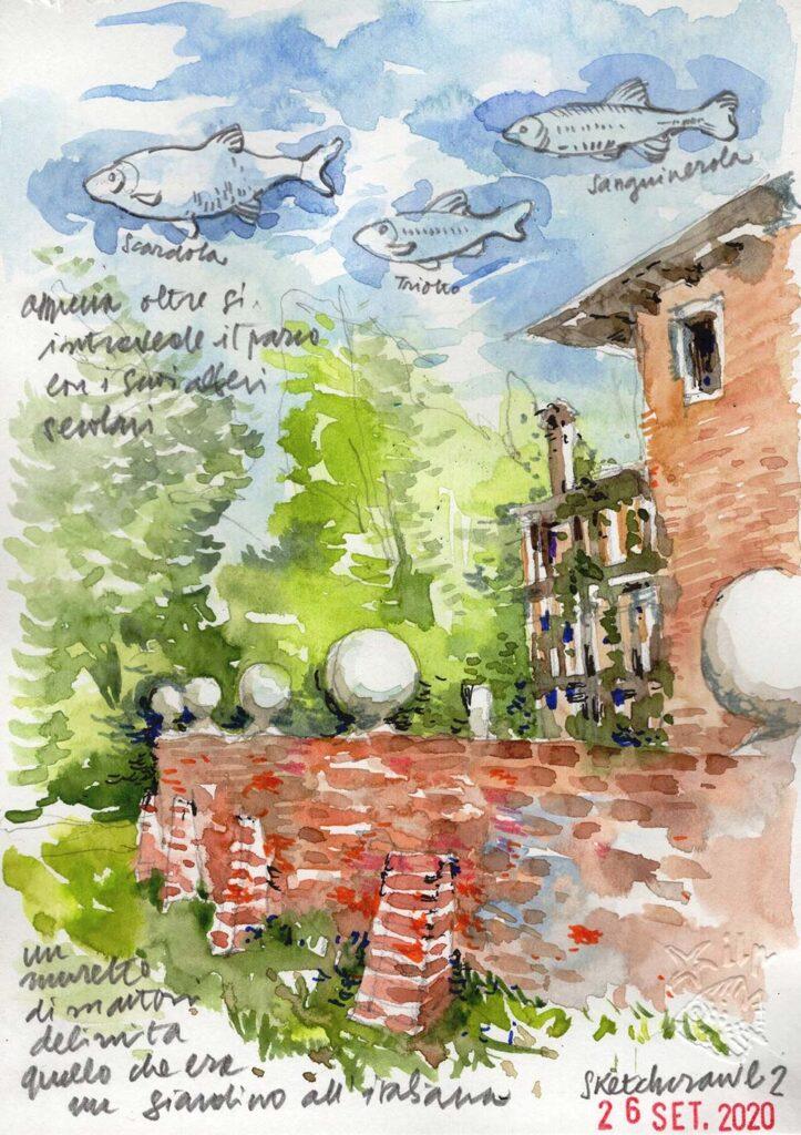 Sketchcrawl Ariis 2020 disegno Ilaria Petrussa