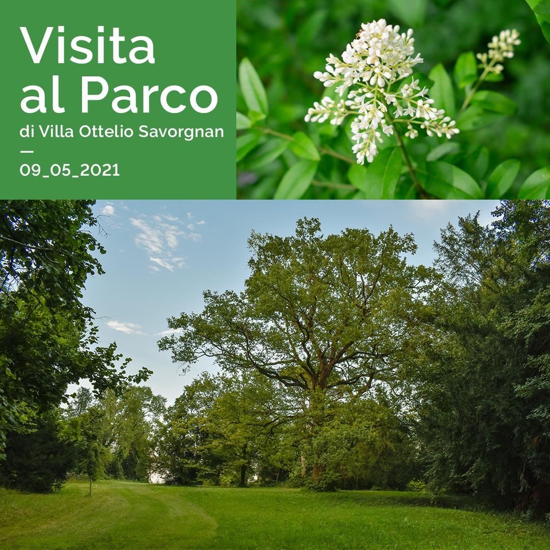Visita al Parco